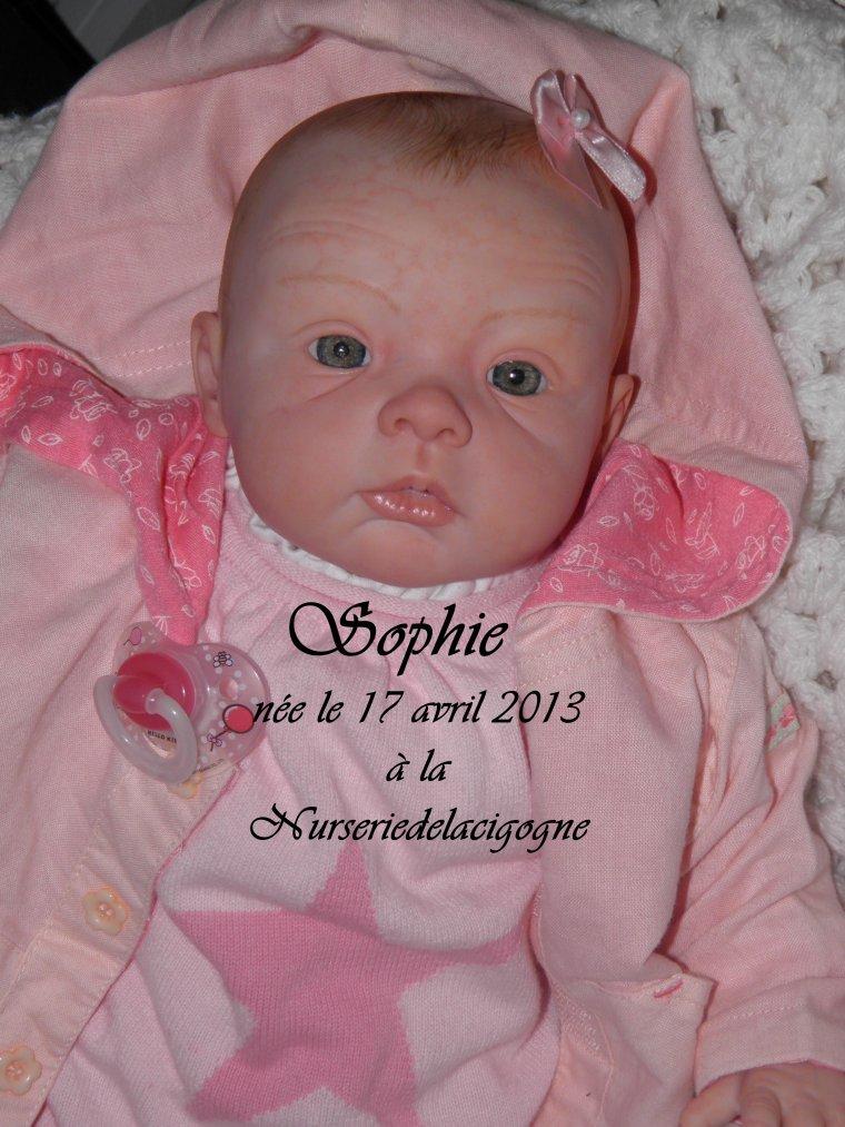 "naissance à la ""nurseriedelacigogne""  - Page 9 3156287062_1_2_OntU98u8"